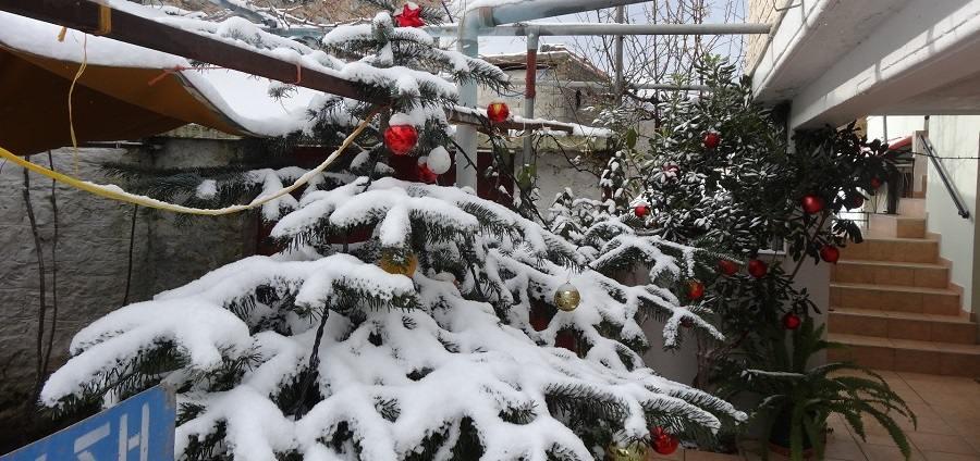 Έλατα και χιόνια στο χωριό